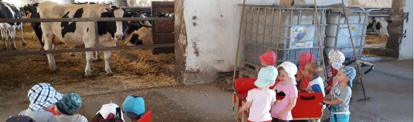 Wanderung zum Kuhstall